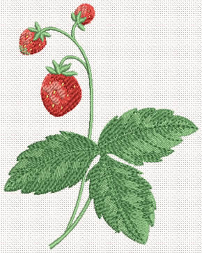 Strawberry Machine Embroidery Design#3