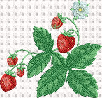 10345 Strawberry machine embroidery No1