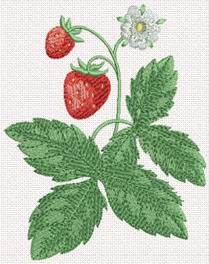 10346 Strawberry machine embroidery No2