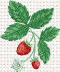 10348 Strawberry machine embroidery No4