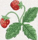 10350 Strawberry machine embroidery No6